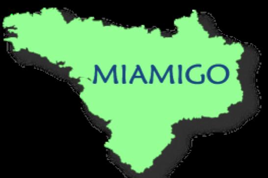 Réseau MIAMIGO